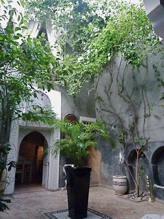 Riad les 2 Portes : frais patio