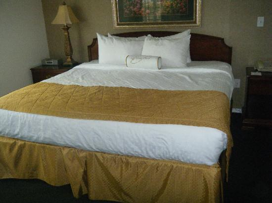 "Suites at Fall Creek: Beds & pillows were VERY comfortable. Card under bed read ""yes, we clean under here, too."""