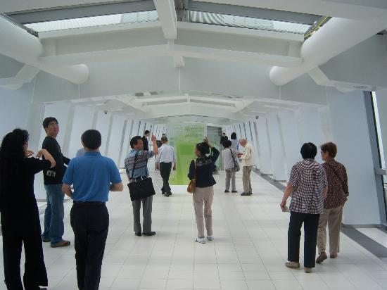 Lower Level Observation Deck Picture Of Shanghai World