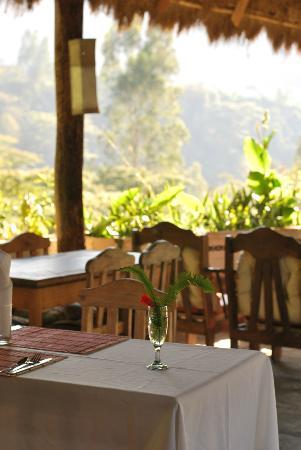 Eco Quechua Lodge: Area de restaurante