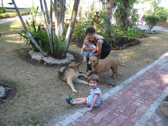 El Mirador: im Garten mit den Hunden