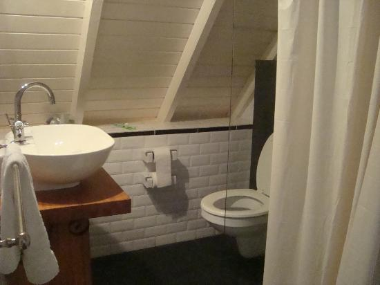Pietermaai Boutique Hotel: the bathroom; the edge of the shower stall is the vertical line, not the shower curtain