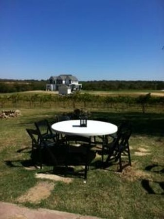 Athens, TX: View of the Murchison mansion and vineyards