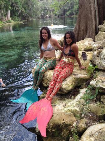 Mermaids Love Ginnie Springs
