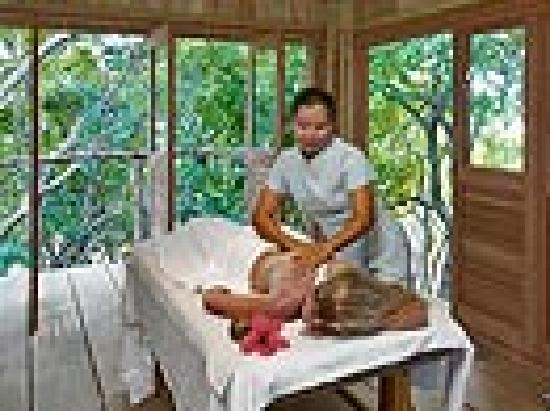 Petit St. Vincent Resort: Spa treehouse treatment room