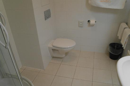 Austria Suites: Ванная