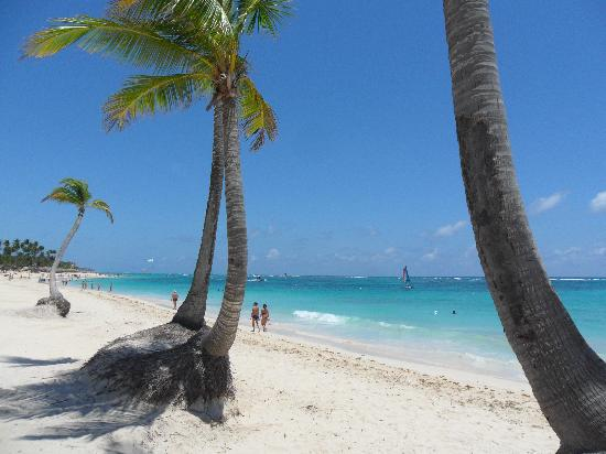 Iberostar Dominicana Hotel : playa