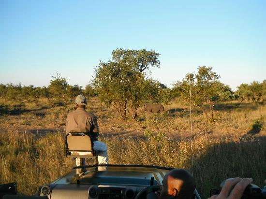 Cheetah Plains: On a game drive