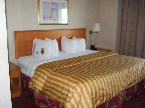 Wyndham Glenview Suites Chicago Northshore: Room 510