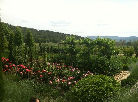 Wine in Provence Tours: Wineries in Aix-en-Provence
