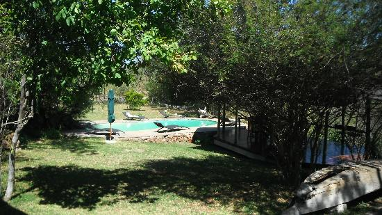 Muchenje Safari Lodge: Pool
