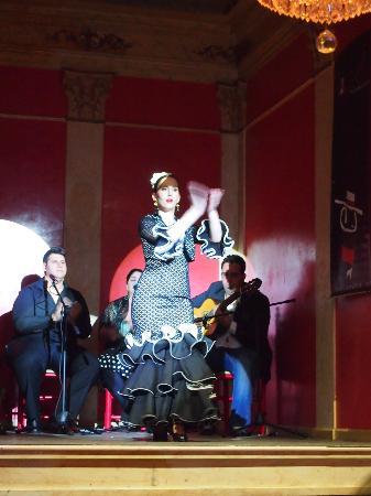 Liceo Flamenco Club Malaga