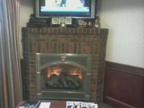Holiday Inn Express & Suites Ex I-71/ Oh. State Fair/Expo Center : Nice fireplace to have my moring coffee