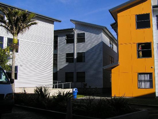 Nikau Apartments : internal courtyard