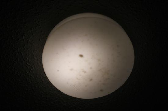 Country Hearth Inn & Suites: Not sunspots. Dead bugs in light fixture
