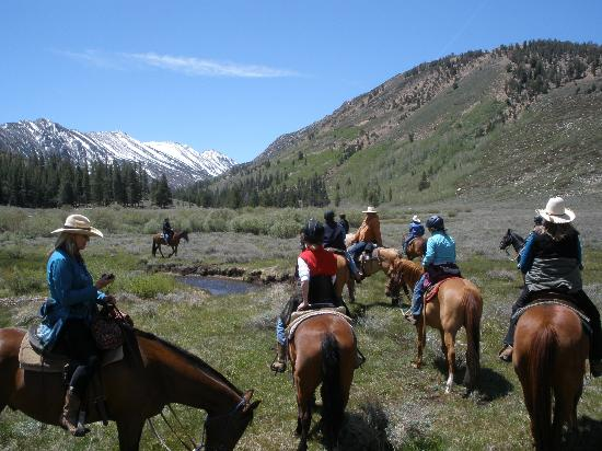Hunewill Guest Ranch: Day ride to Burt Canyon, a pristine wilderness