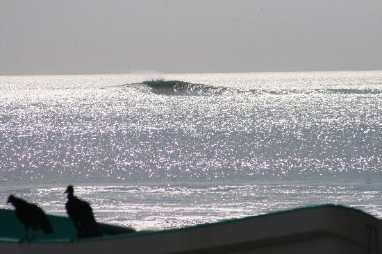 Club Surf Popoyo 사진