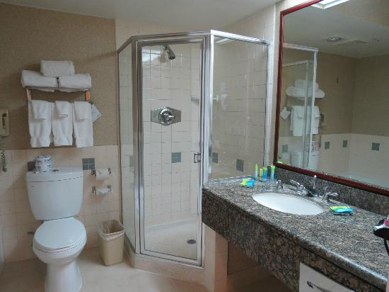 Radisson Hotel Chatsworth: shower stall with rough floor