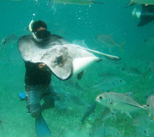 Mario's Tours: Joe holding a ray