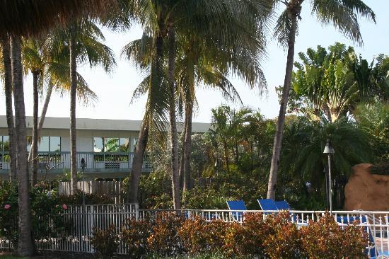 Holiday Inn Key Largo: exterior view