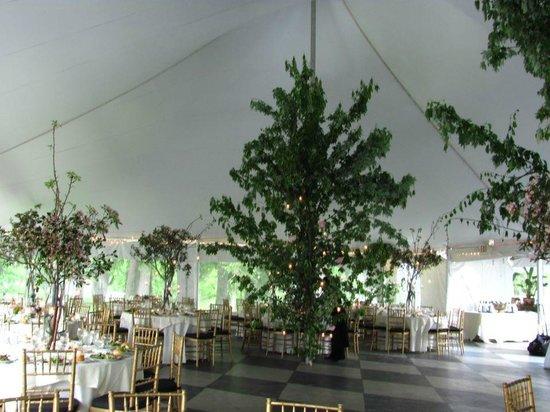 Belvedere Mansion: Peak at our tent setup...