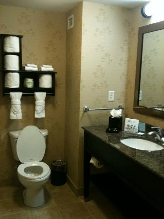 Hampton Inn & Suites Chicago/Mt. Prospect: Hampton Inn bathroom
