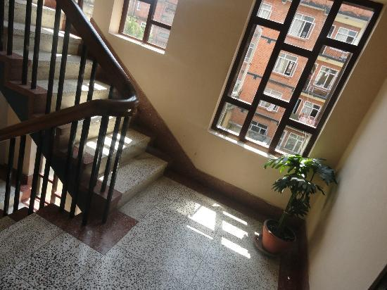 Hotel Backpackers INN: staircase