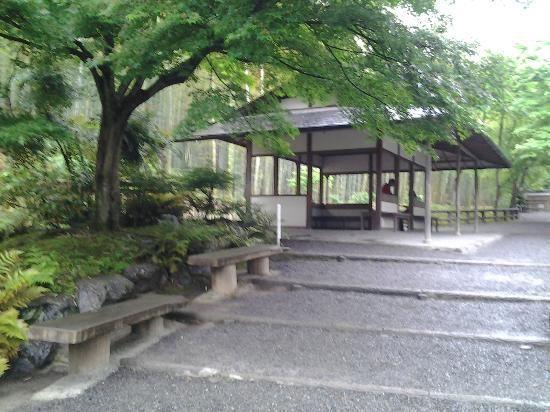 Tenryuji Temple: Meditation area