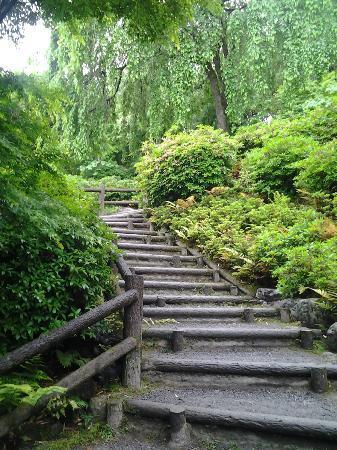 Tenryuji Temple: Stairway to Heaven