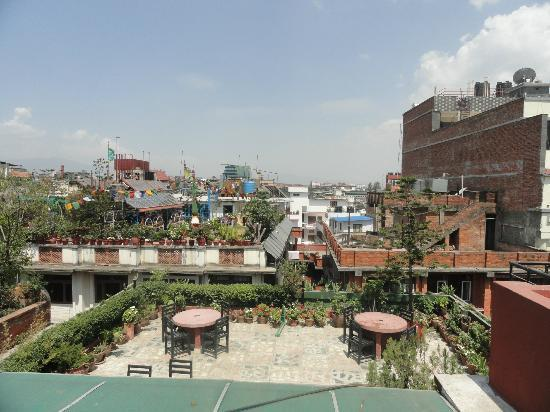 Hotel Backpackers INN: Roof top garden resturant and  out view