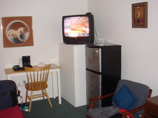 Aloha Kai Vacation Rentals: Heladera; tv y escritorioenla habitacion