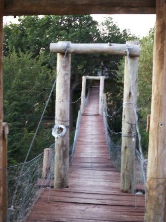 Tshukudu Bush Camp: Swing bridge to lookout