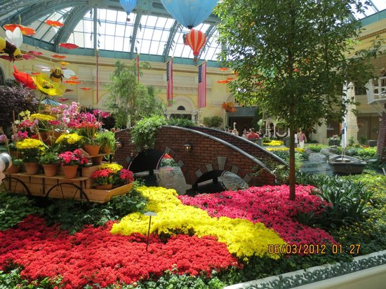 Frog Picture Of Conservatory Botanical Gardens At Bellagio Las Vegas Tripadvisor
