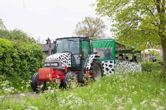 Lee Valley Park Farms: Take a ride on Tex the tractor