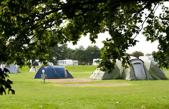 Lee Valley Camping and Caravan Park, Edmonton : Get away from it all