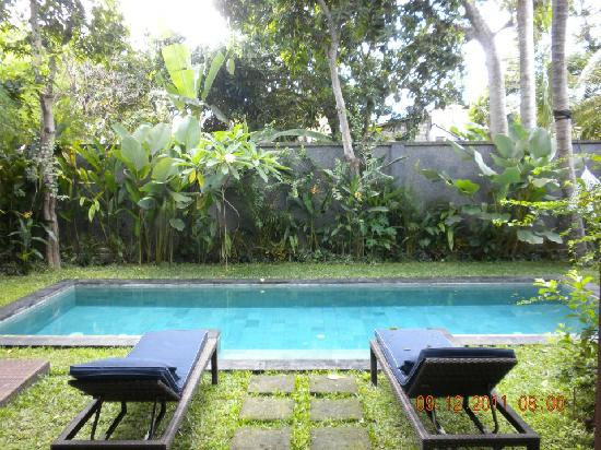Mango Tree Villas: The private pool