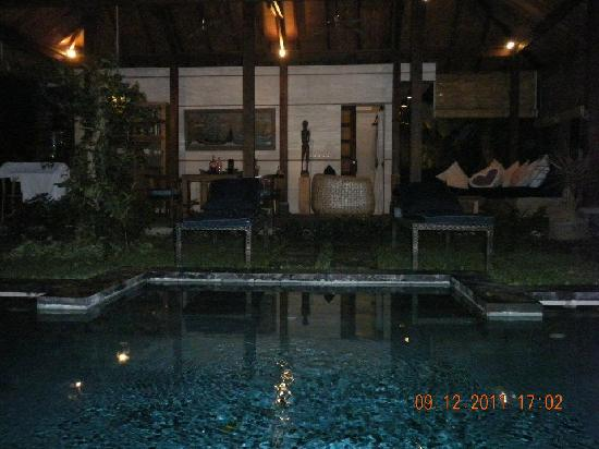 Mango Tree Villas: Villa at night