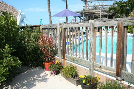 BayView Inn Motel and Marina : Very tropical setting