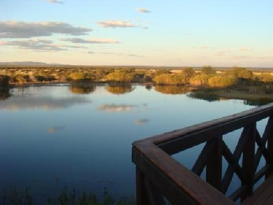 Ditholo Game Lodge: Water View