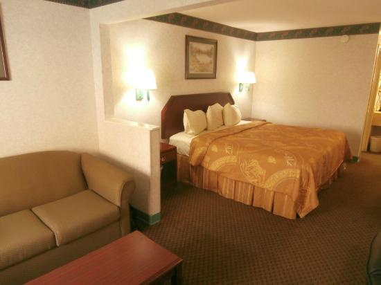 BEST WESTERN Inn & Suites : Room 131
