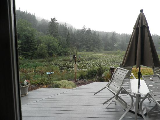 Otters Pond Bed and Breakfast: Looking over Otters Pond while eating breakfast.