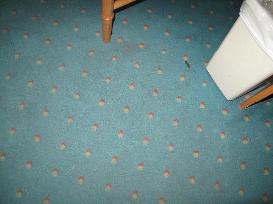 Eco Hotel Diamond Antwerp: Teppich auf dem Zimmer übersäht mit Brand- unbd sonstigen Flecken