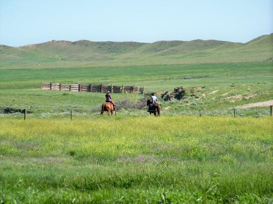 The TA Guest Ranch: Riding the range