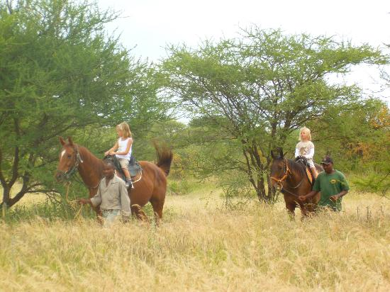 ‪‪Manyara Ranch Conservancy‬: activities‬