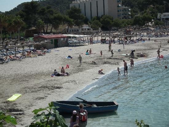 Camp de Mar bay - Picture of Camp de Mar, Peguera - TripAdvisor