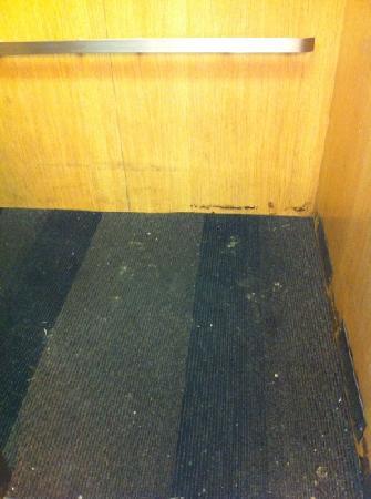 Motel 6 Jackson: the elevator