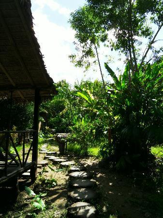 Wasai Tambopata Lodge: Senderos entre bungalows