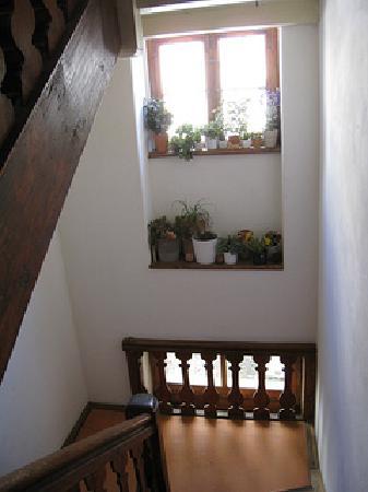 Altstadt Pension im Hollanderviertel: Narrow stairs