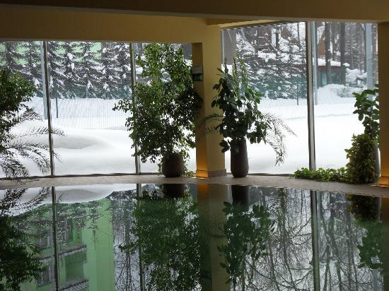 Art & Spa : basen i widok za oknem