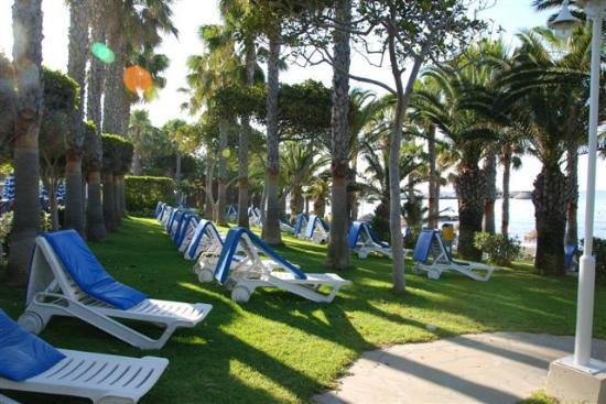 GrandResort: Quiet shaded area between pool and beach